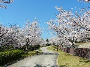 Kobe, une ville à découvrir