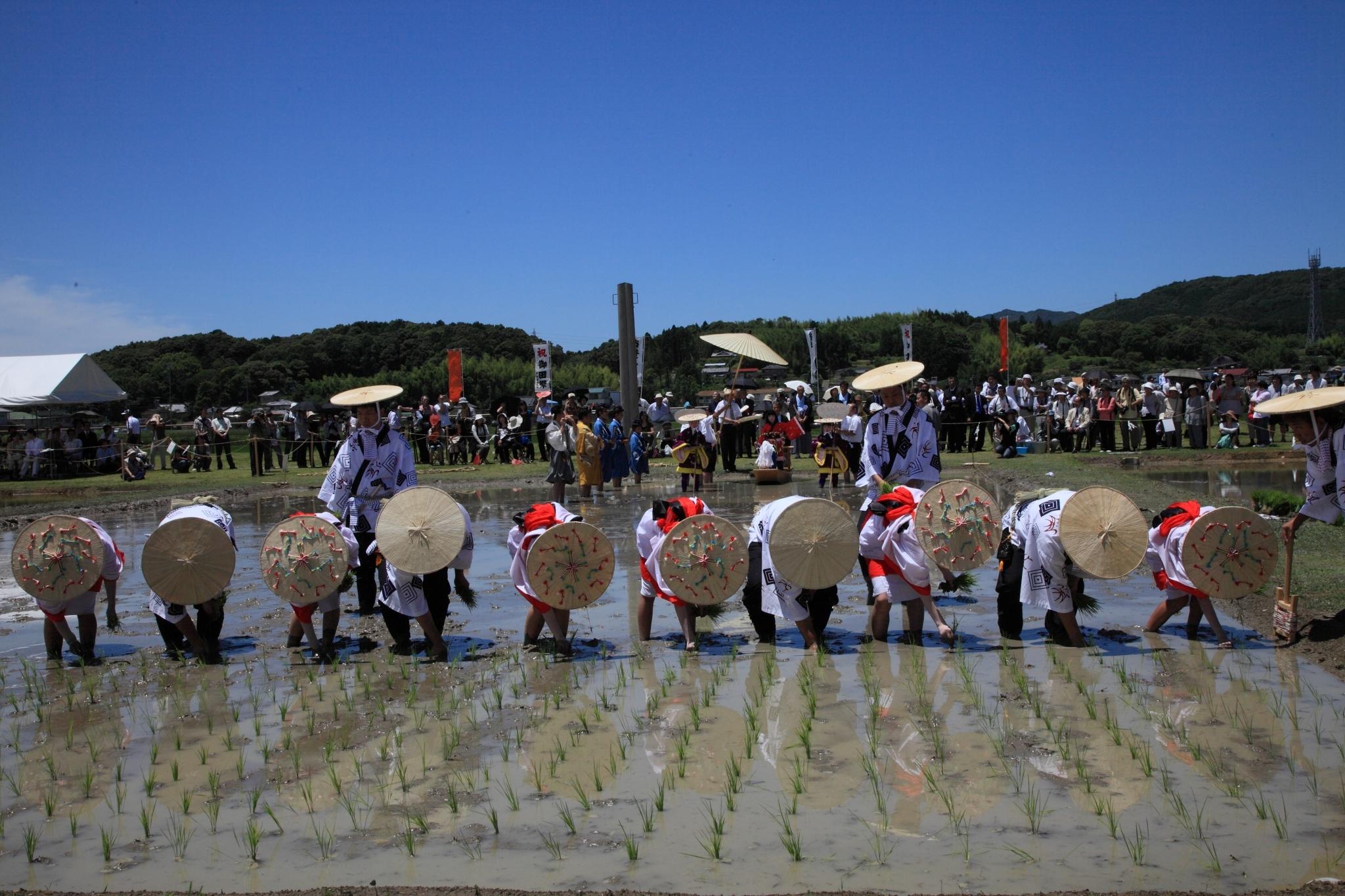 Festival de la plantation du riz d'Izawanomiya
