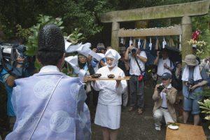 Festival de Shirongo (Shirongo Matsuri)