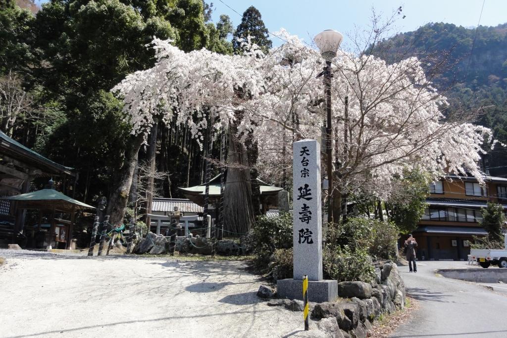 Le temple Enju-in