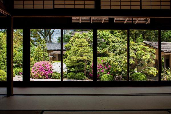 matsue shimane Japon tourisme tradition pavillon thé matcha wagashi pâtisserie tatami jardin château matsue voyage dégustation verdure nature relaxation