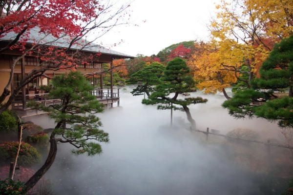 matsue shimane daikonshima yuushien yûshien pivoine jardin japonais botan bonsai pins art traditionnel contemporain cuisine japonaise momiji érable illuminations brume voyage tourisme japon