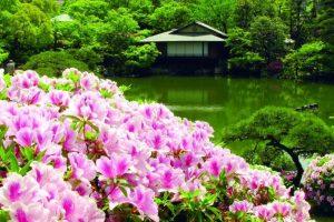 Le jardin japonais Sōrakuen