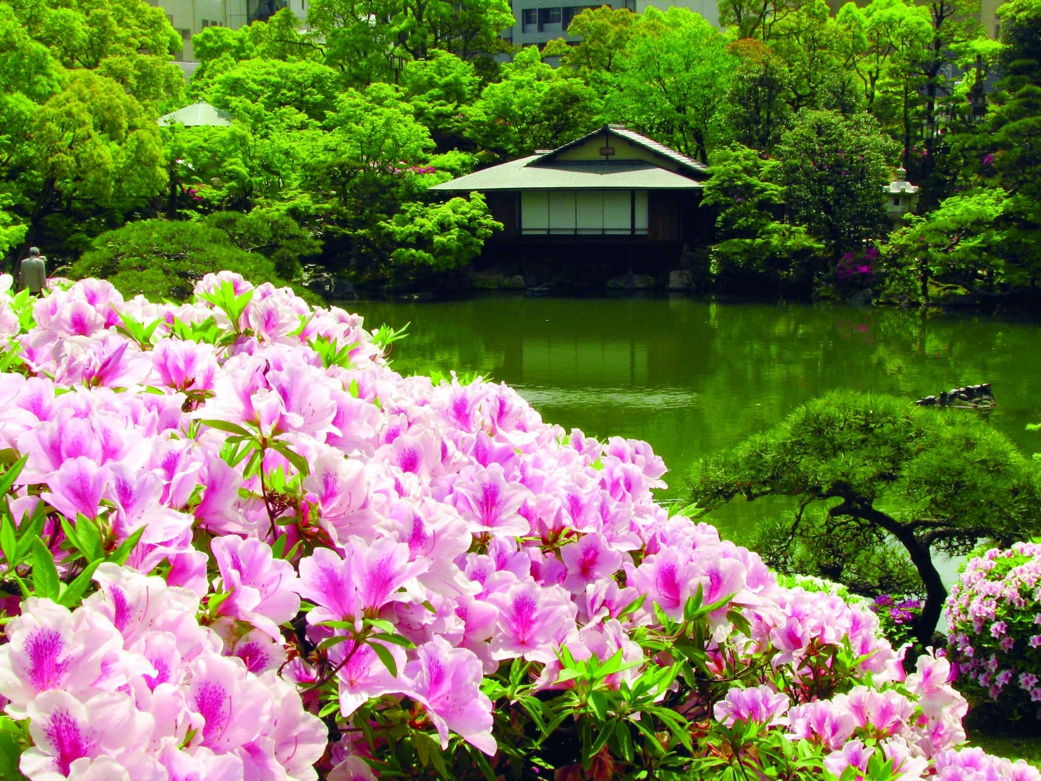 Le jardin japonais Sôrakuen