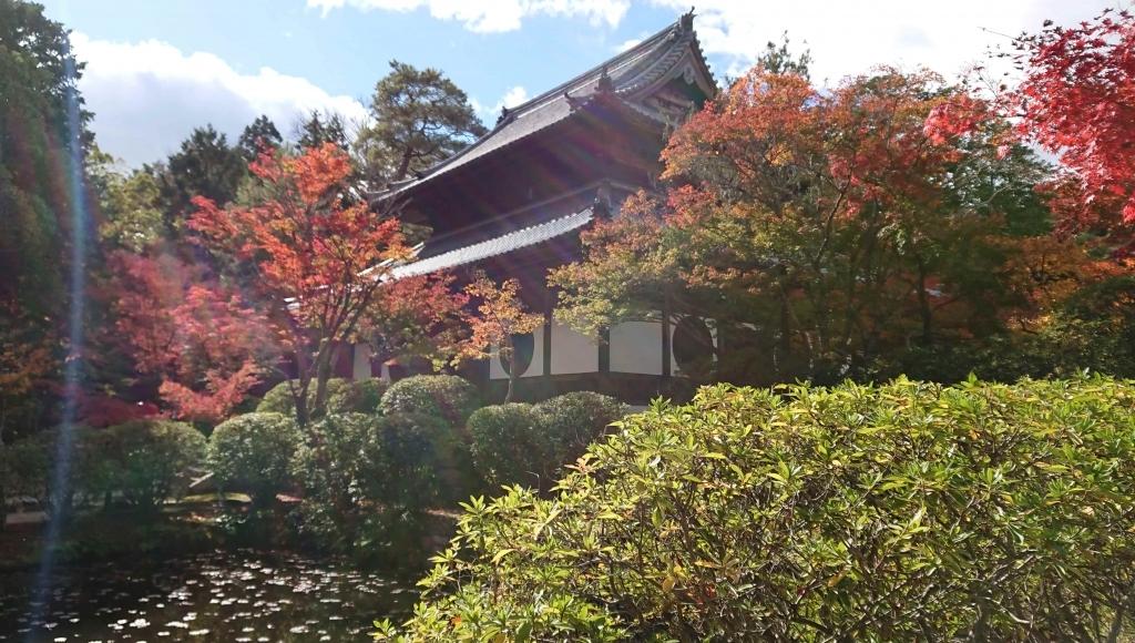 Le temple d'Iyama Hofukuji