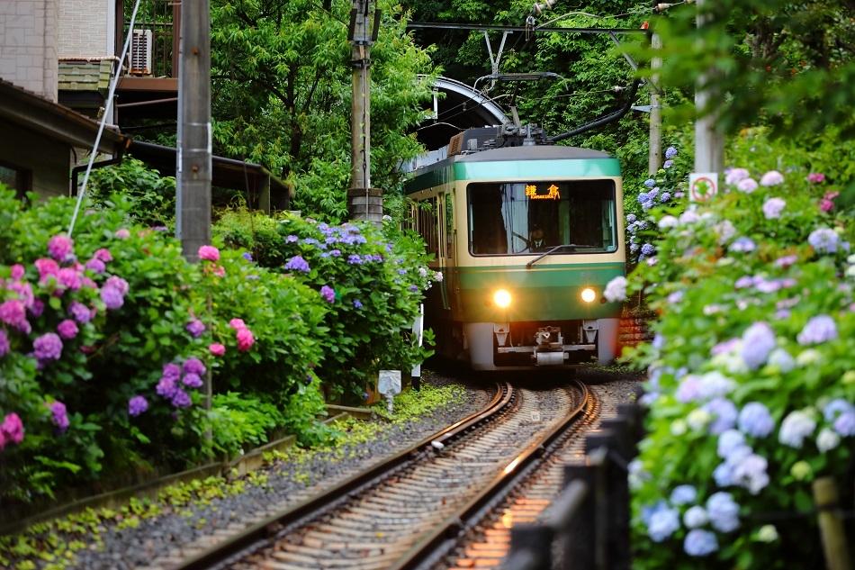 Eno-den : Petit train nostalgique et pittoresque