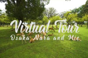 Voyages virtuels avec les trains Kintetsu
