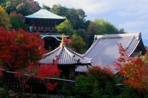 Le Daishō-in