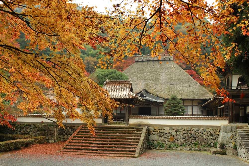 WA-SAKURA - Japon Voyage Tourisme Shimane Tsuwano Yōmeiji temple Kakuôzan extérieur nature montagne automne kôyô