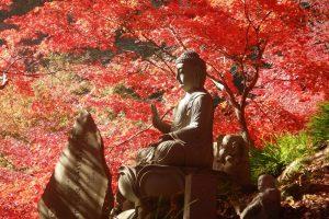 Le Temple Oyama-dera